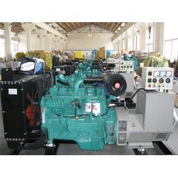发电机组_潍坊德曼动力_潍柴发电机组生产厂家图片