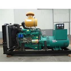 上柴发电机组型号|德曼动力(在线咨询)|台州上柴发电机组图片