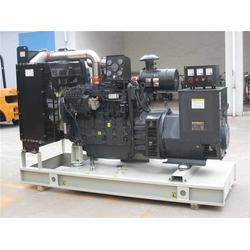 德曼动力(图)、上柴发电机组、山西上柴发电机组图片