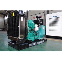 康明斯柴油发电机组哪家好-德曼动力科技有限公司-杭州发电机组图片