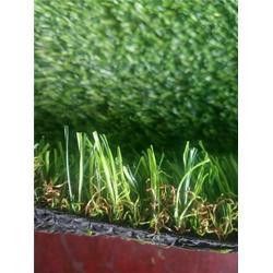 任丘林柯厂家直销(图),仿真草坪效果图,仿真草坪图片