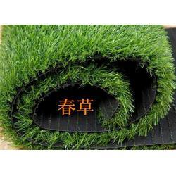塑料草坪生产线,塑料草坪,任丘林柯图片