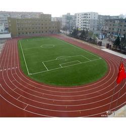 塑胶跑道哪家好,天津塑胶跑道,天津津宇体育图片