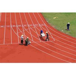 天津塑胶跑道-天津塑胶跑道制做-津宇体育器材(优质商家)图片
