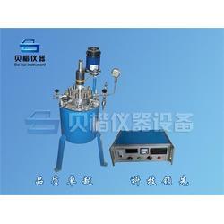 江苏反应釜定制、贝楷仪器、不锈钢反应釜定制图片