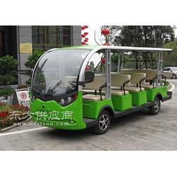 燃油观光车 旅游电动观光车 厂家供应图片
