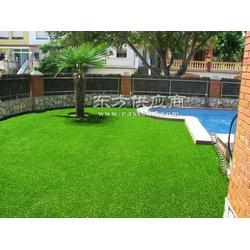 20MM加密加厚人造草皮假草幼儿园仿真草坪地毯图片