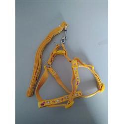 宠物织带厂-兴达(在线咨询)宠物织带