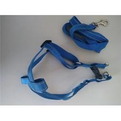 宠物织带-兴达按时交货(在线咨询)松紧宠物织带图片