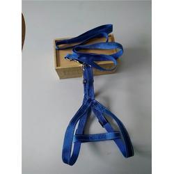 兴达织带可以定制,宠物牵引带,缎纹宠物牵引带图片