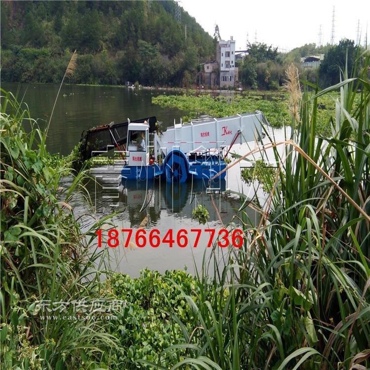 水葫芦怎样清理干净 湖面水花生收割保洁设备