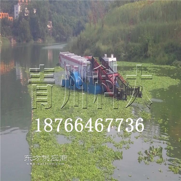 水上割草船可打捞海草的清理设备