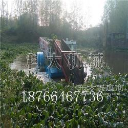 江湖中水葫芦粉碎打捞船 收集水面草清洁机械图片