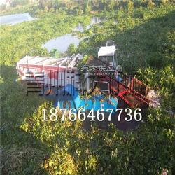 中型水葫芦收割设备 水域杂草干净清理机器图片