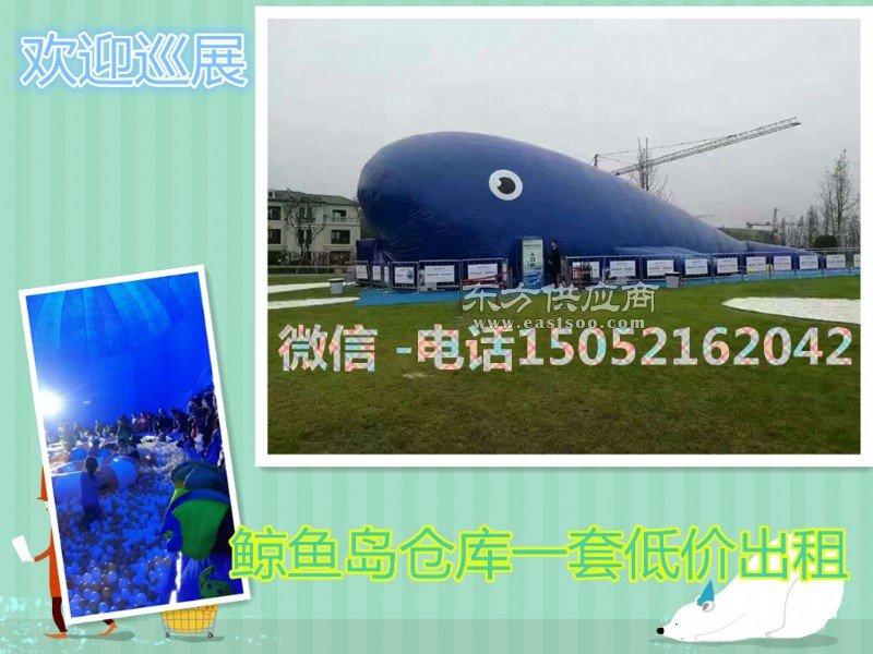 鲸鱼岛出售鲸鱼岛气模乐园大型鲸鱼岛冬季气模首选图片