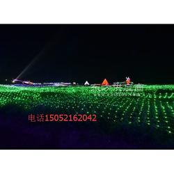 灯光展活动方案梦幻灯光造型展览LED灯光节出售图片