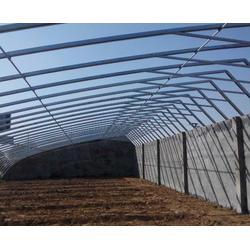 阳光板温室大棚、安徽农友(在线咨询)、合肥温室大棚图片