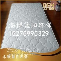 OEM代加工水暖床垫 智能磁疗床垫 水循环温控床垫图片