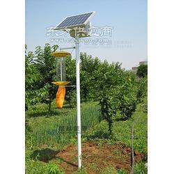 锂电智能型太阳能杀虫灯 朗越能源节能环保型太阳能路灯图片