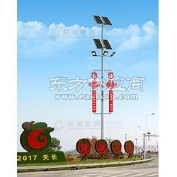 锂电智能型太阳能高杆灯朗越能源太阳灯系列图片