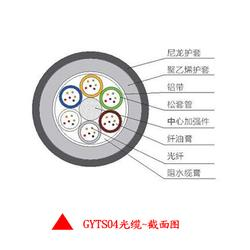 24芯GYTS04光缆,GYTS04防鼠光缆