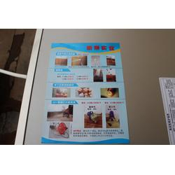 新果果袋用心服务 果袋哪家好-温州果袋图片
