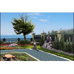 铜川绿化苗木、绿化苗木、清和环保(图)图片
