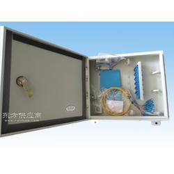 壁挂式12芯光纤楼道箱图片