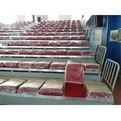 看臺座椅-展達體育-學生活動看臺座椅圖片