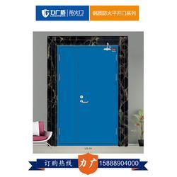 广东钢质防火门,力广门窗质量立足市场,钢质防火门加工