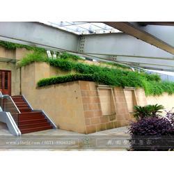 别墅花园景观设计|一禾园林|下沙别墅花园景观设计图片