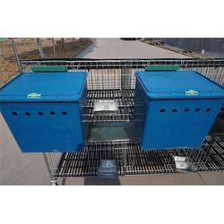 淄博肉食兔自动化养殖设备- 诸城大牧源机械图片