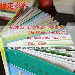 制作项目册、策划案、纪念册-彩客快印店图片