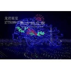 2017灯光节厂家图片