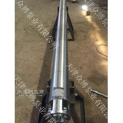 不锈钢热水潜水泵抽海水专用潜水泵图片