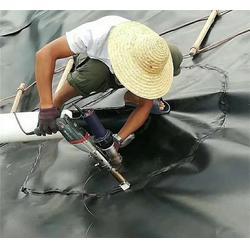 土工膜爬焊机,鑫宇土工材料(在线咨询),江西土工膜图片