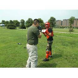 特卫随身护卫-特卫-兴安保安公司图片
