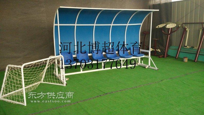 制造足球防护棚专业厂家图片