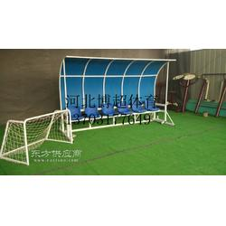 专业足球防护棚生产厂家图片