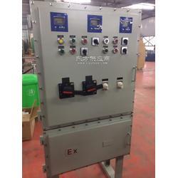一进三出电伴热带防爆电控箱图片