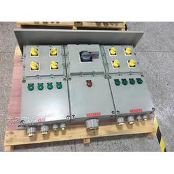 带防雨罩BXM51-非标防爆照明配电箱图片