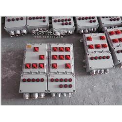 定做BXM51-6K63防爆照明配电箱图片