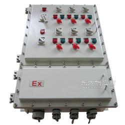 防爆配电箱IIBBXM51-T5/100A图片