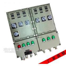 电伴热带防爆防腐配电箱 防爆防漏电电源柜图片