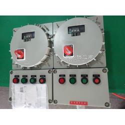 供应优质防爆脉冲控制仪配电箱图片