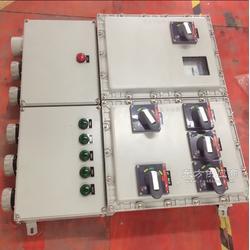 BDX51-8K100防爆动力配电箱图片
