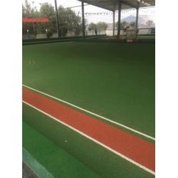 金华市人造草球场 人造草球场 永康体育设施(查看)图片
