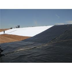 樂山垃圾覆蓋膜-垃圾場覆蓋膜-儒風土工(多圖)圖片