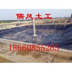 防渗膜|儒风土工|鱼池专用防渗膜图片