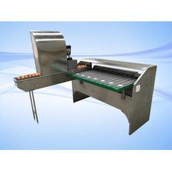 皮蛋重量分级机质量-诸城昊泰机械-南京皮蛋重量分级机图片